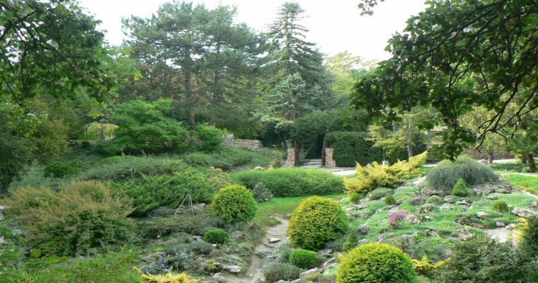 originales jardines decorados rocas