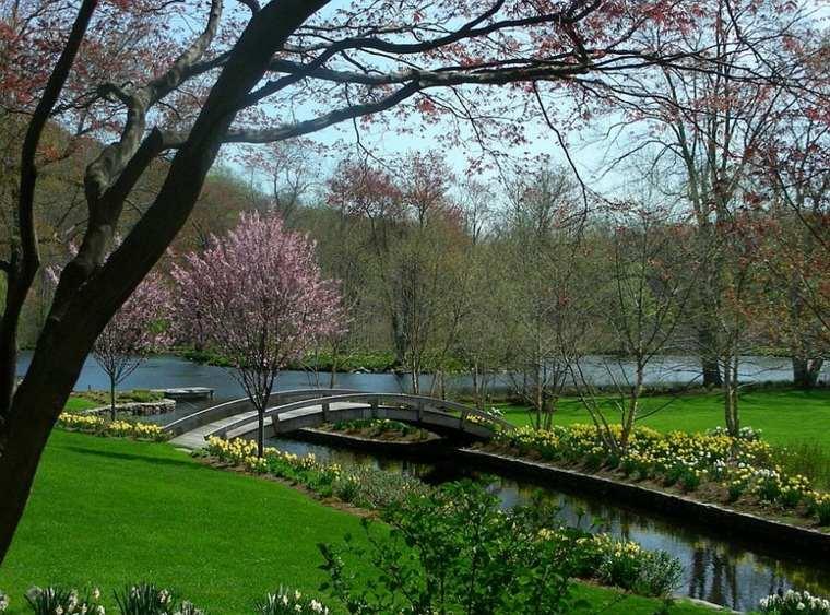 parques bonitos diseños puentes