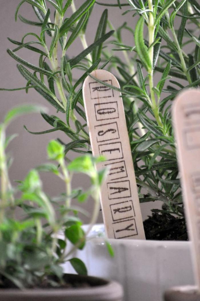 paletas madera sentidos conceptos letras
