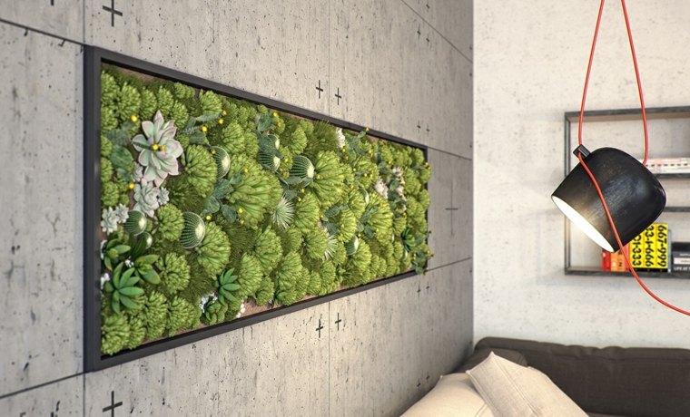 jardn pared plantas suculentas