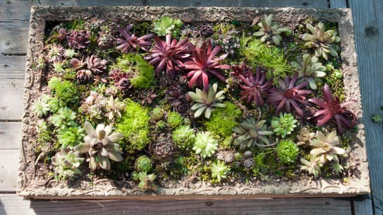 panel decorado plantas bonitas colores
