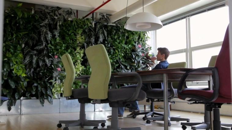 panel plantas interior oficina deco