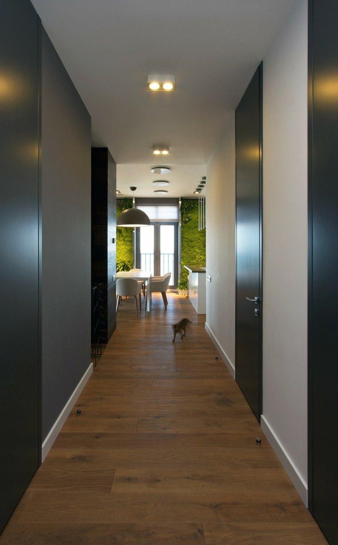 pasillo vistas paredes verdes salón