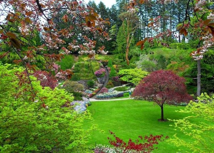 pendientes paisajismo detalles conceptos ramas