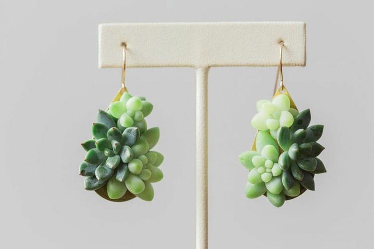 pendientes plantas suculentas naturales