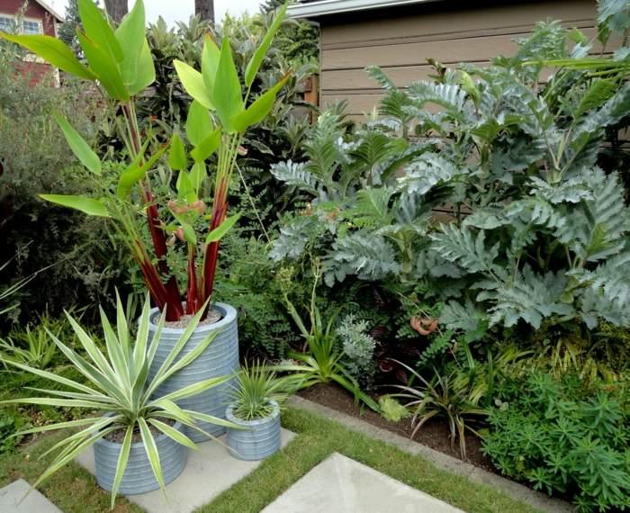 pequeños detalles plantas macetas conceptos