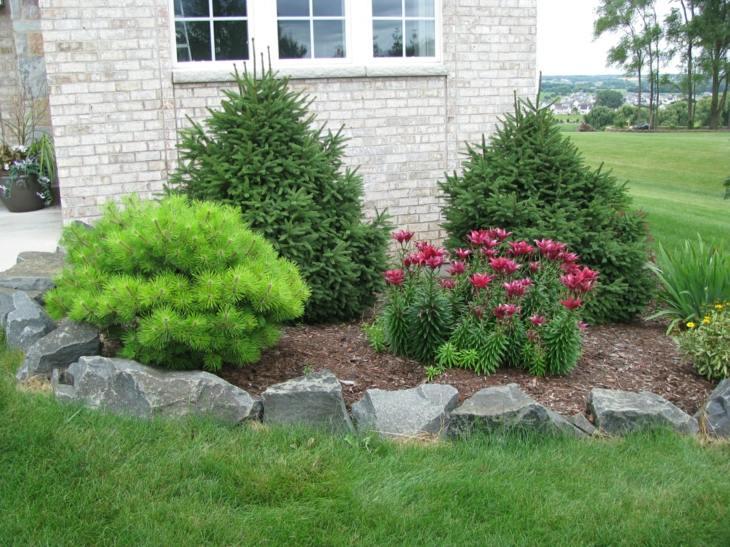 piedras para jardin concepto peculiares cesped