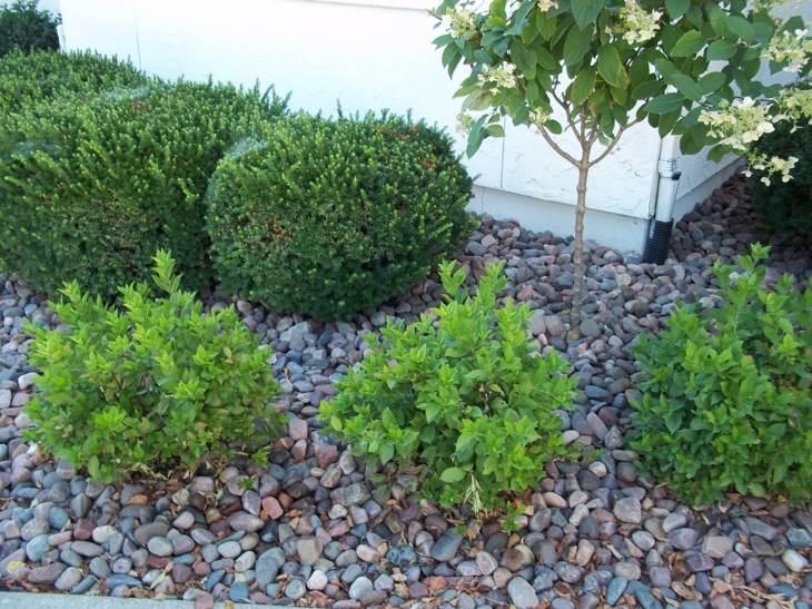 piedras para jardin creando ambientes naturales