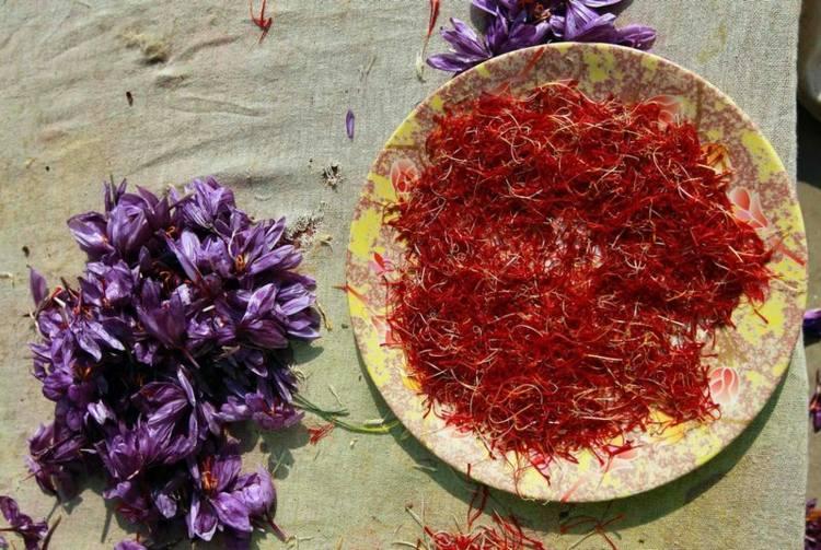 plato especias flores