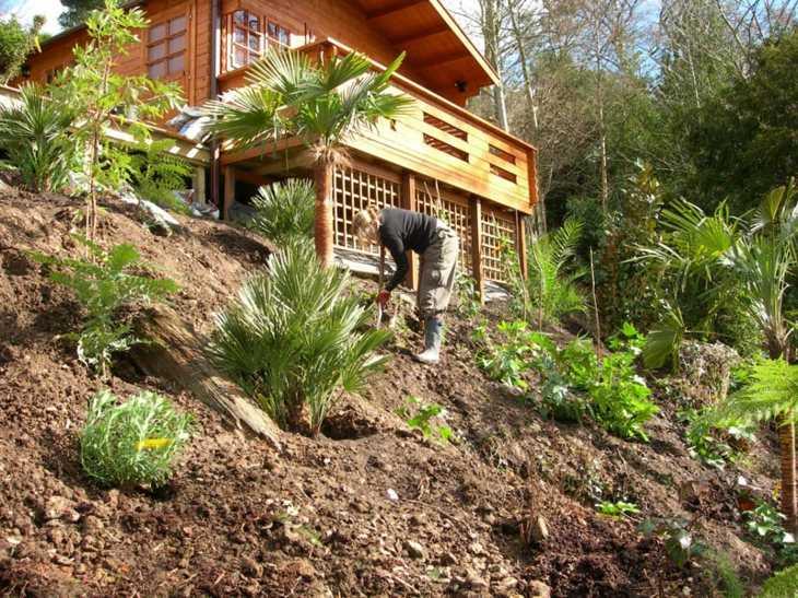 preparacion terrenos contol plantas colores