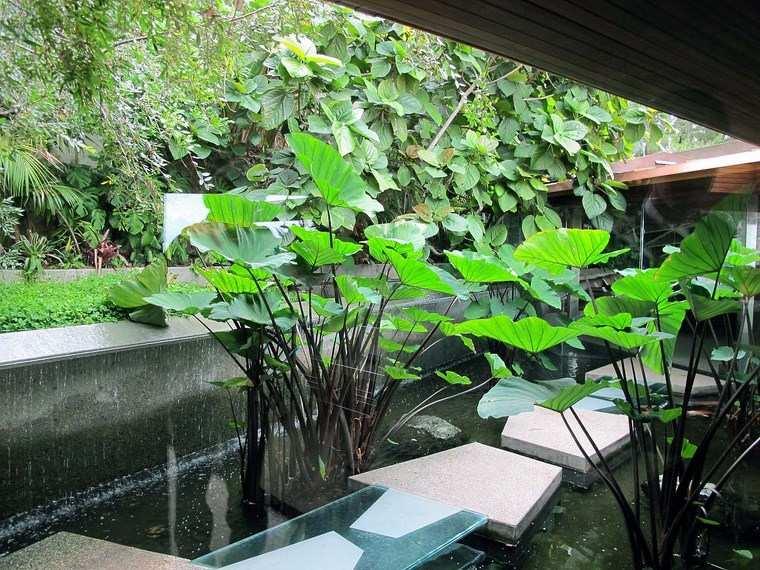 residencia colina estanque losas plantas ideas