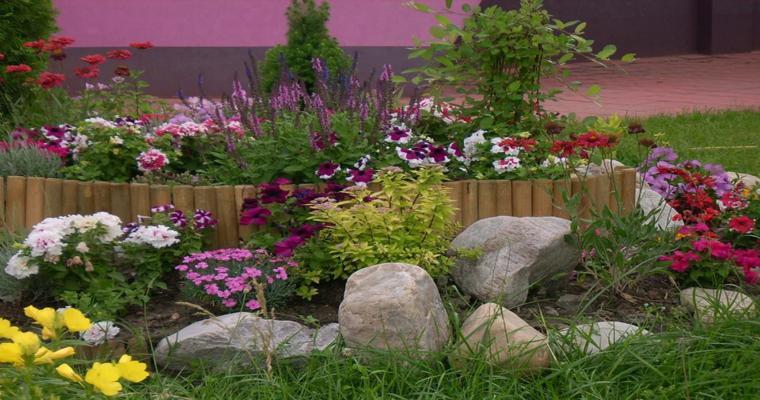 rocalla jardín flores colores
