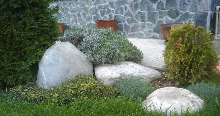 rocallas piedras grandes decorativas