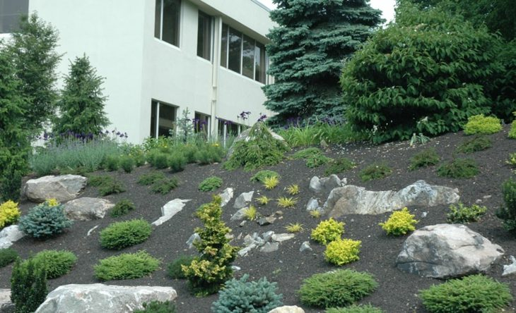 rocas combinadas estante suelos blancos