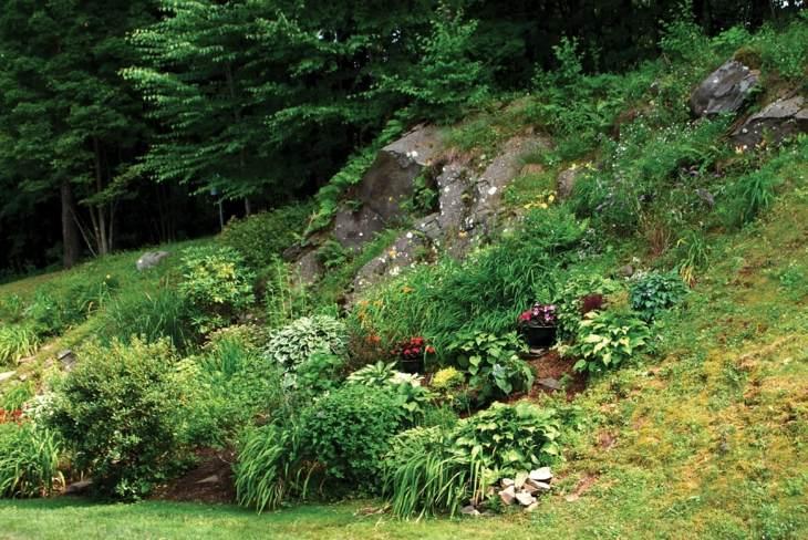 rocas leccion estilo conceptos flores