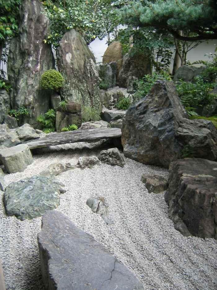 rocas satados variedades arboles significados