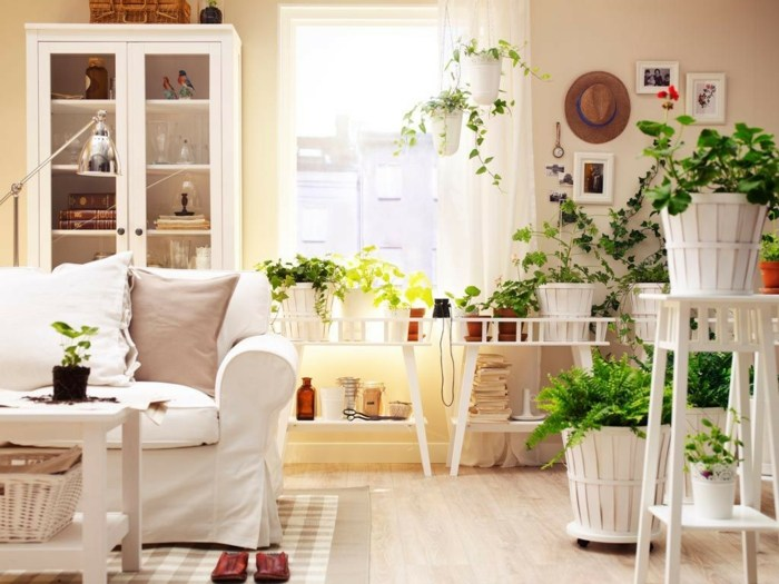 salon muebles blancos plantas verdes ideas
