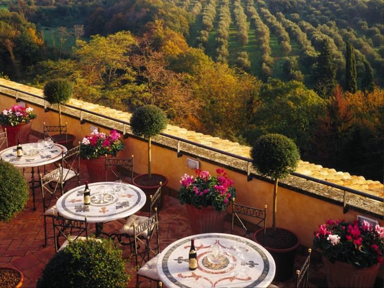terraza lujosa vistas los viñedos