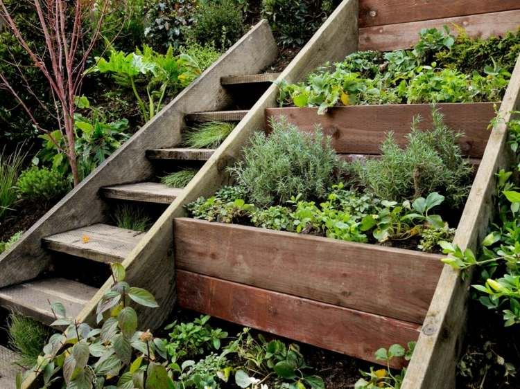terrazas jardin plantas madera
