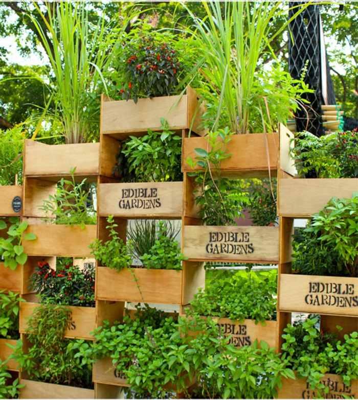 veintidos opciones hierbas cajas madera ideas