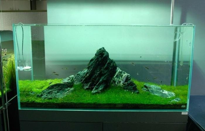 acuarios montañas efectos paredes cristales