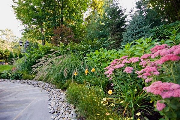 arbustos de jardin flores camino rosas ideas