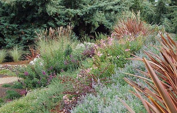 Jardines con arbustos finest canad jardines arbustos de for Arbustos para jardin