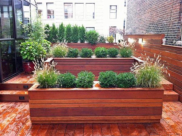 arbustos jardin suelo madera plantas ideas