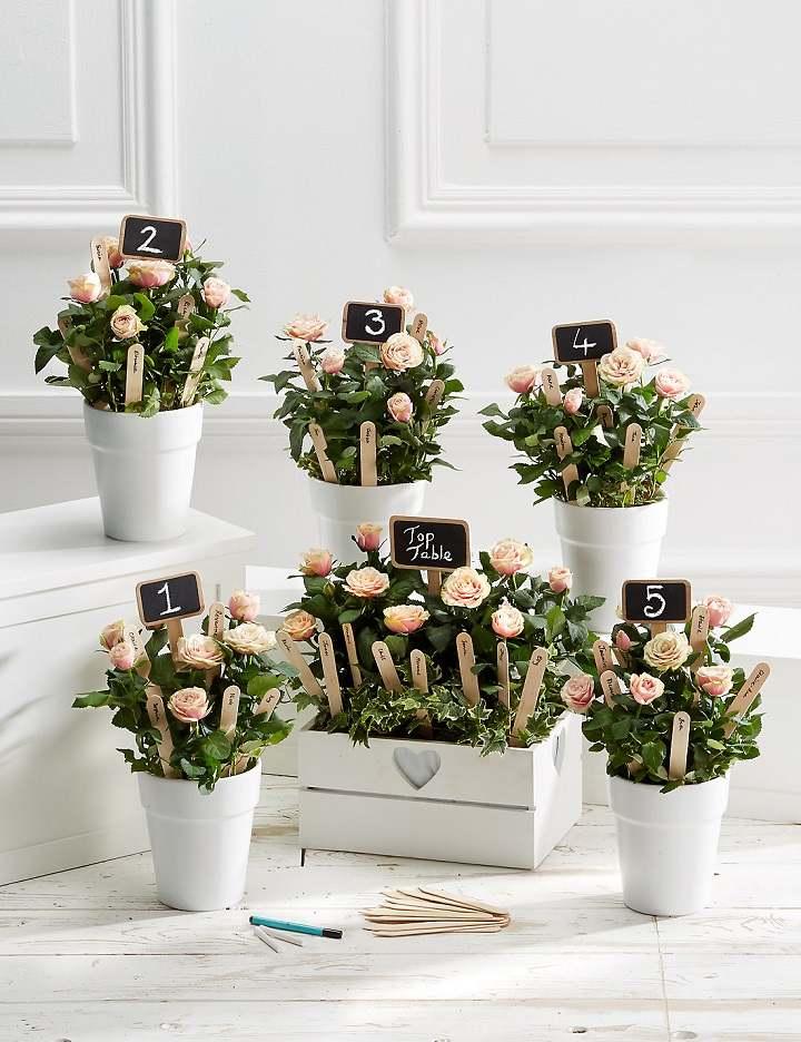 bodas primaverales opciones decoracion macetas blancas ideas