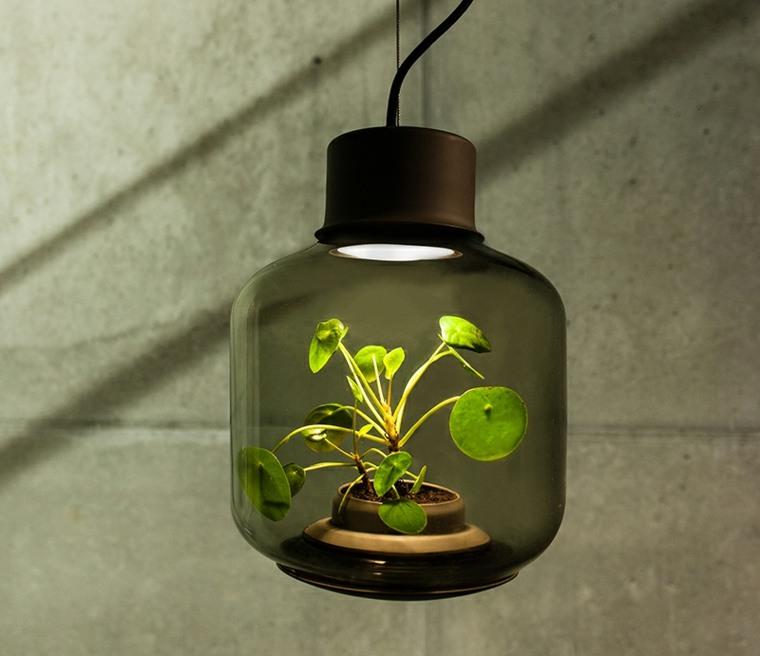 bonita lámparas planta interior