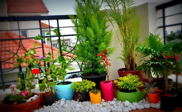 bonita decoración terraza macetas