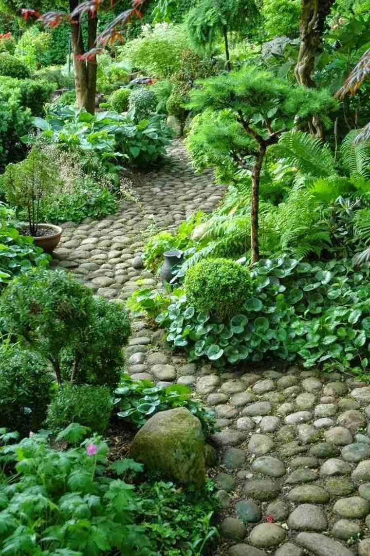 camino piedras jardin plantas opciones ideas