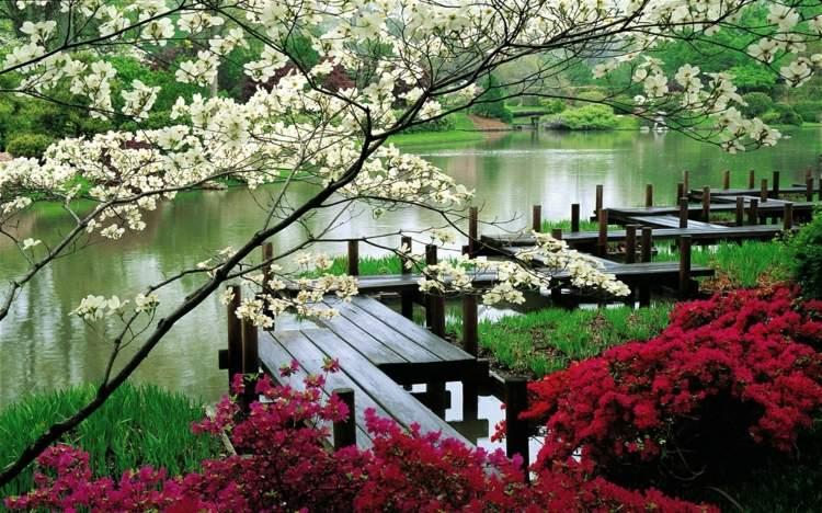 colores sistemas fragmentos puentes flores