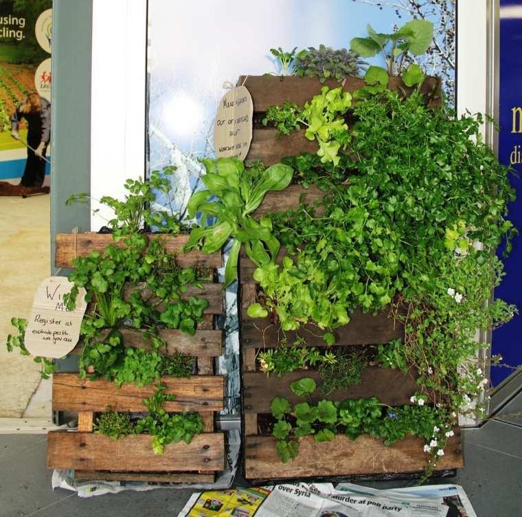 conceptos plantas exteriores manualidades soluciones