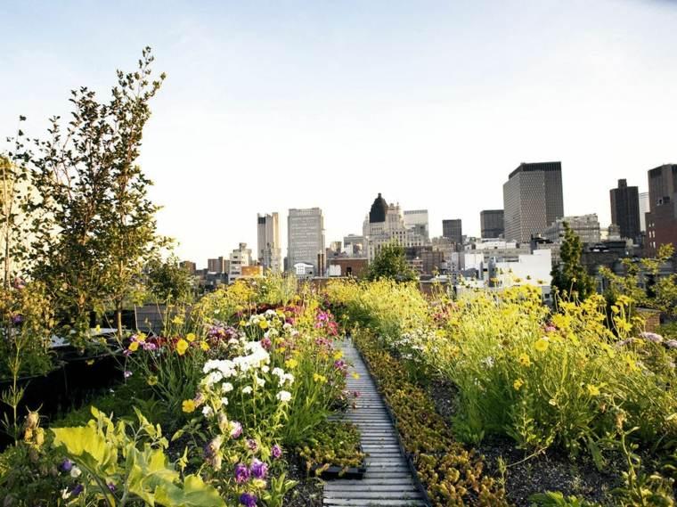 jardineria terraza atico camino