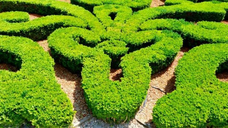 diseño laberintos verde jardin