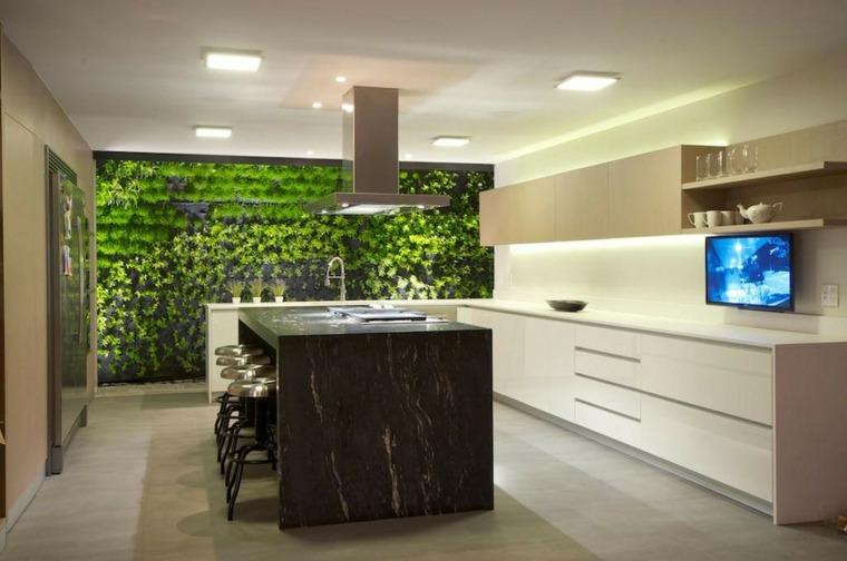 fondo cocinas modernas estantes plantas television
