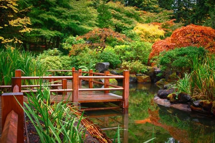 soliuciones creativas verdes puentes naturales