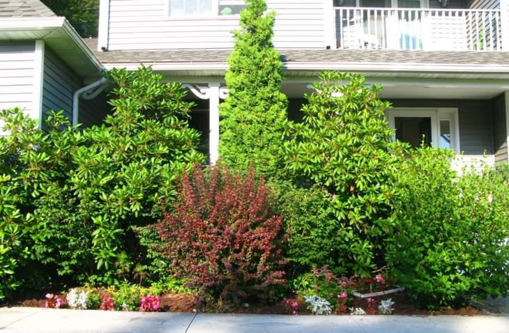 frontal jardines casas decoraciones dimensiones