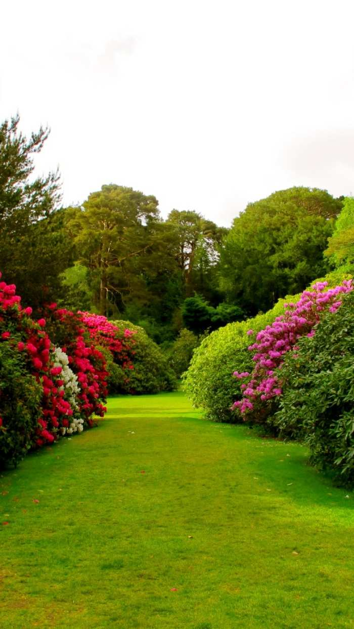 imagenes paisajes jardin cesped arbustos