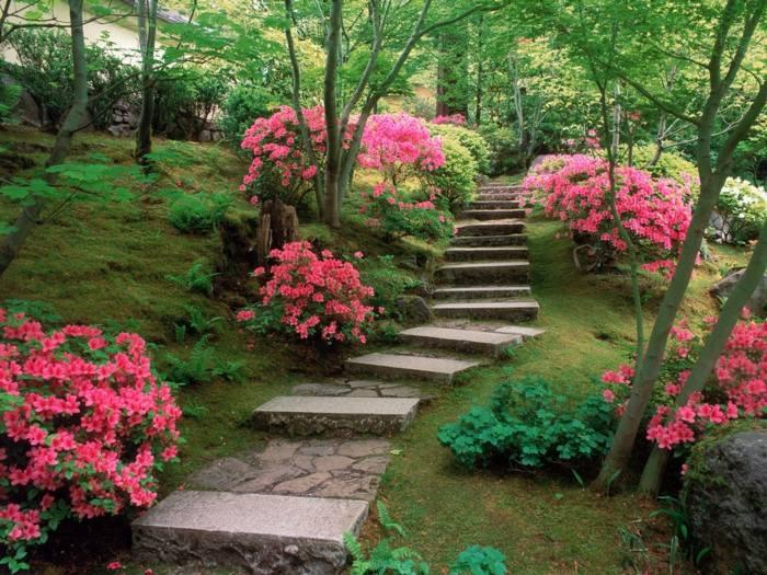 imagenes paisajes jardin escaleras flores ideas