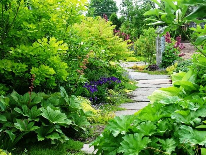 imagenes paisaje jardin piedras grandes ideas