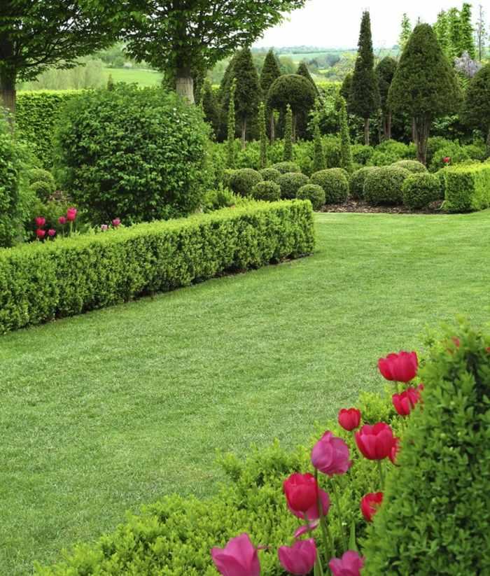 imagenes paisaje jardin tulipanes cesped ideas