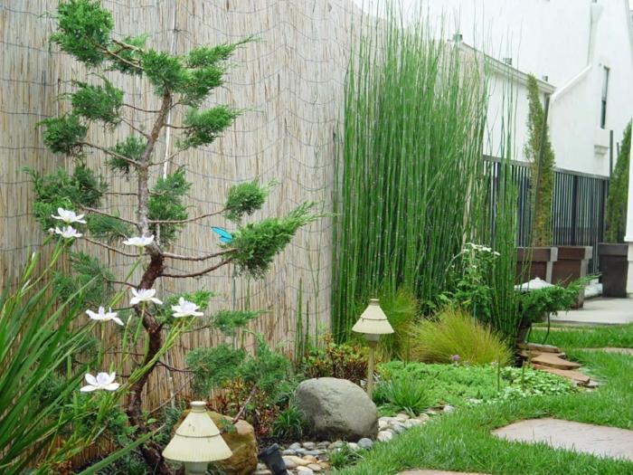 imagenes paisaje jardin zen bambu ideas