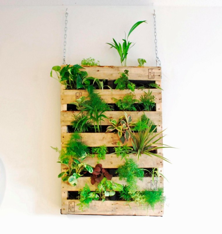 Jardin vertical con palets incre bles dise os f ciles de for Jardines verticales con madera