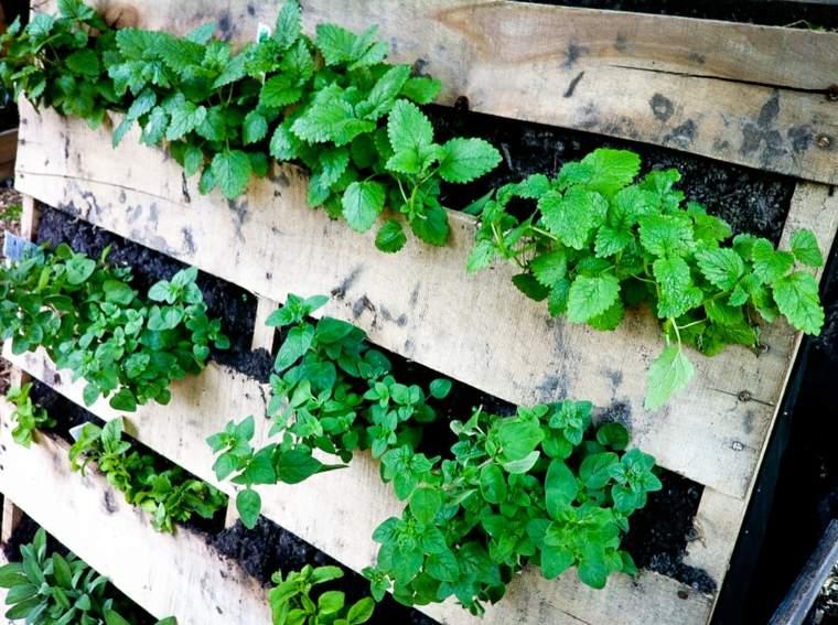 jardin vertical con palets maderas cubiertas hierbas