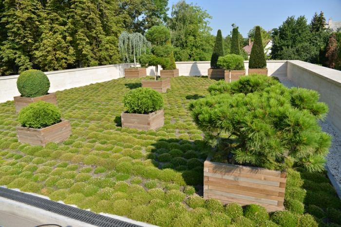 jardineras madera soluciones patio tejado