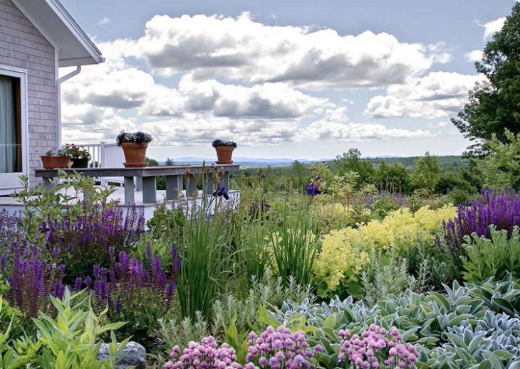 jardines arbustos decoraciones patios macetas