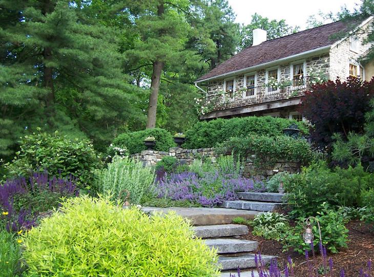 jardines arbustos funciones especiales rocas