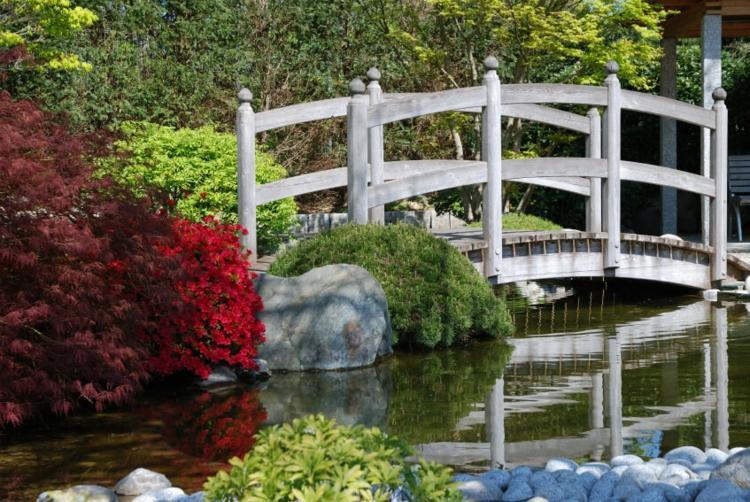 madera puentes color funciones diseño color